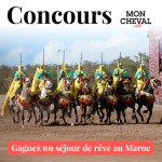 concours moncheval.net
